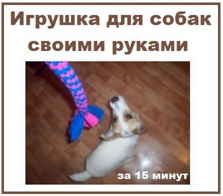 igrushka-kanatik