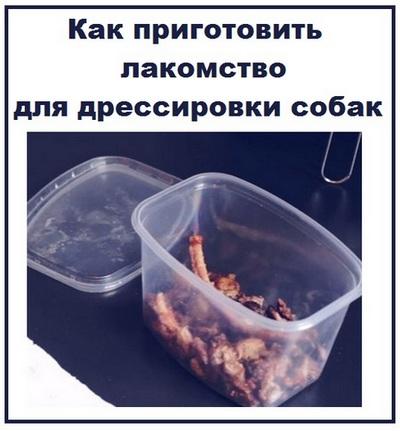 lakomstvo-dlya-sobak